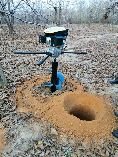 汽油挖树坑机价格合理