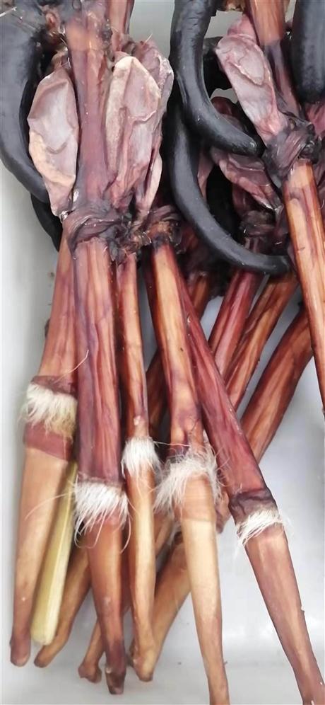 刺猬皮多少钱一斤