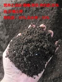 重庆 营养土 草炭土 轻质土 育苗基质 腐殖土 有机肥厂家批发价格