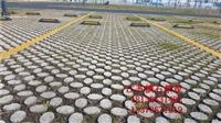植草地坪施工及模具直供透水地坪施工材料全国直供价格优 高品质
