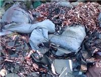 東莞樟木頭鎳氫電池正負極回收