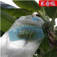 乐动手环app下载安装HJD90香蕉防寒袋设备珍珠棉发泡机