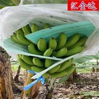 乐动手环app下载安装HJD90香蕉防虫袋设备热销珍珠棉EPE设备