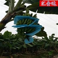 乐动手环app下载安装HJD105珍珠棉香蕉袋设备珍珠棉发泡机