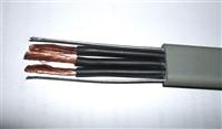 109A信号屏蔽电缆IAN-KVVRP