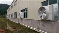 通风降温养猪抽风机单相220v养殖换气扇