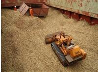 天津河北区木屑造纸厂木屑进口木屑