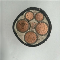 6mm2铜线2.76直径绞合BP-GVFP3变频电缆
