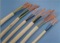 16芯阻燃硅橡胶电缆ZR-JF46GB绞合系数4.70