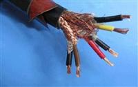 镀锡铜线编织ZB-JFP2VR高温计算机电缆