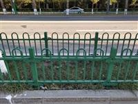 廊坊市安次区PVC草坪围栏锌钢绿化护栏全国供应
