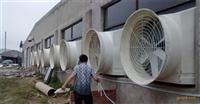 简易大棚降温1220食用菌鹏风机深圳喷雾降温设备