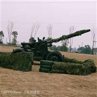 軍事模型租賃軍事武器模型廠家