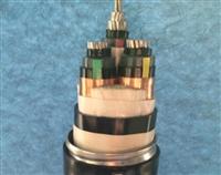 -20度耐寒护套JYVPLR22信号屏蔽电缆
