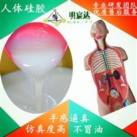 醫療教學模型硅膠,仿真人體硅膠