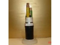信号电缆JVP2VP2外径6D铜带屏遮结构
