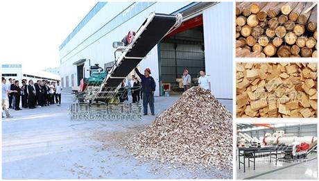 山东生物质颗粒机 木屑、稻壳燃料颗粒机厂家