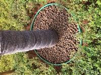 昆明陶粒廠家價格、云南陶粒報價、昆明陶粒更新價格