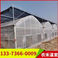 广元温室资材农业温室大棚 温室大棚材料批发价
