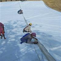 怒江傈僳族自治州热门的两布一膜规范 900克两布一膜 防水土工布