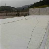 泰州市热门的两布一膜效果 400克两布一膜 防渗土工布