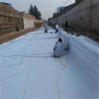 鄂州市优质的两布一膜推荐 700克两布一膜 不透水土工布