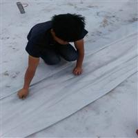 宜春地区优质两布一膜公司 600克两布一膜 防水土工布