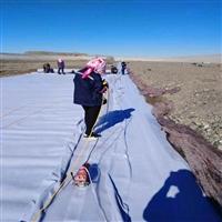 吐鲁番地区优质两布一膜制造商 800克两布一膜 防渗土工布