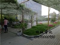 深圳天空农庄亲子乐园喷雾降温
