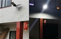 西藏地区可用牧民太阳能路灯照明