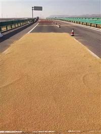 ��夏�y川�y巴高速彩色防滑路面