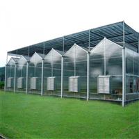 定制阳光板温室设计 连栋PC板大棚承建 温室工程造价