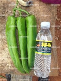 辣椒尖椒種子中早熟果長,黃綠劍818