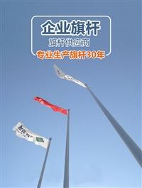 不锈钢旗杆 杭州弘扬旗杆厂 旗杆