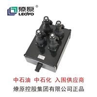 防爆配電箱-防爆LED燈-BXX8050系列防爆防腐檢修電源插座箱