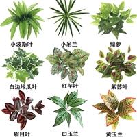 仿真配草花吊兰植物绿草壁挂装饰