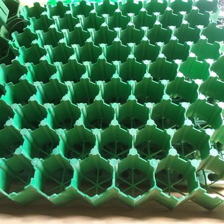 绿化植草格护坡植草格