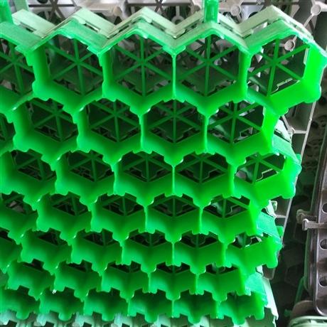 塑料植草格加强型植草格