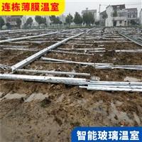 阿壩理縣溫室大棚材料批發價 連棟大棚廠家安裝建設