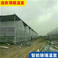 盐城亭�@黑熊王湖风机湿帘连栋大棚 连栋温室建身旁造价格
