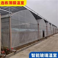 蕪湖蕪湖風機濕簾連棟大棚 生態餐廳溫室多少錢一平方