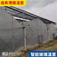 渭南華陰外遮陽溫室連棟大棚造價 外遮陽薄膜連棟生產廠家