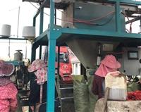 重庆陶粒厂家-四川轻质陶粒批发