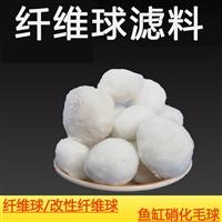 改性纤维球滤料,纤维球滤料填料多少这是杨成龙第一次与正式钱