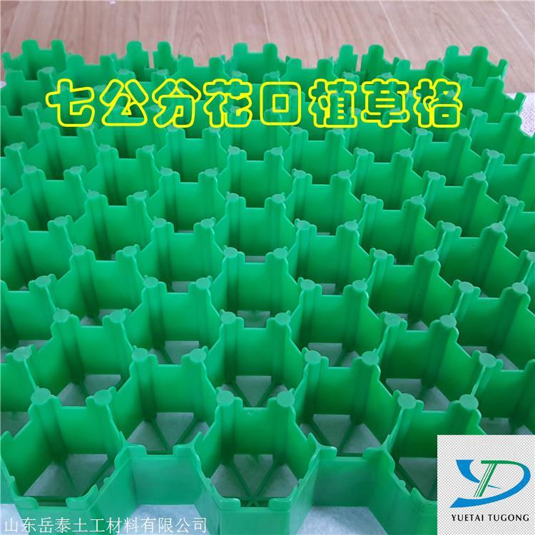 塑料植草格,停车场植草格-山东岳泰土工