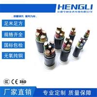 6/10KV聚氯乙烯绝缘ZC-AGRP2本安电缆