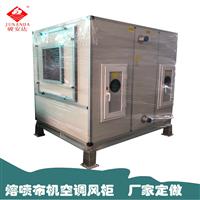 恒温恒湿风柜 十万级净化风柜带变频变速净化空调厂家