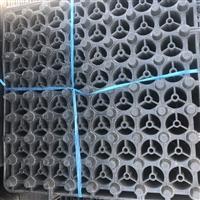 福建大帽排水板支持定制