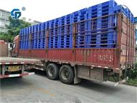 慶陽塑料托盤1.3米網格叉車棧板生產廠家