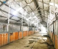 清徐縣霧森系統高壓噴霧降溫廠家大量供應